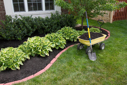 outdoor picture of a nice garden bed with a yellow gardening trolley and shovel on the grass area